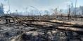 Los incendios que consumen la Amazonia, la región más deforestada